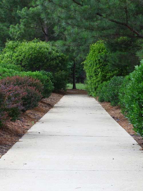 Concrete sidewalks, Kingsville